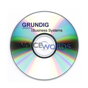 Grundig Software-Upgrade auf DigtaSoft pro 4.x